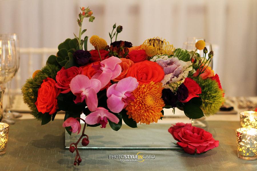 los cabos flowers