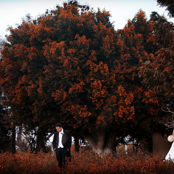 Destination Wedding Photographer - Corazon + Guillermo -